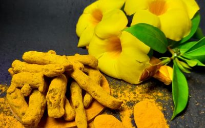Turmeric, the yellow magical herb!